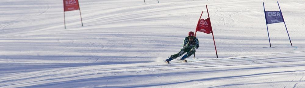 Dartmouth Ski Team, Men Alpine